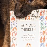 Dog Training books, dog philosophy, understanding dogs, dog books